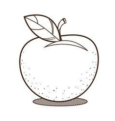 Apple outline drawing for coloring fruit logo vector