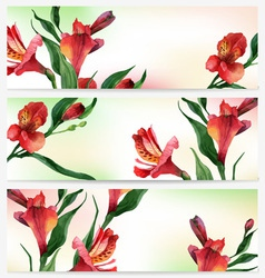Header bright floral backgrounds vector