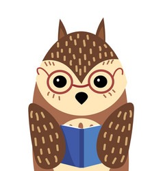 a cartoon portrait of an owl with a book stylized vector image