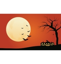 Pumpkins and bat Halloween backgrounds vector image