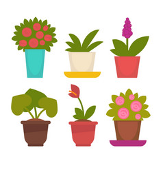 Assortment of potted flowers vector