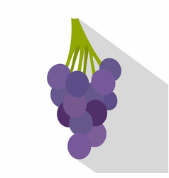 bunch of blue grapes icon flat style vector image