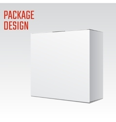 White Box mock vector image vector image