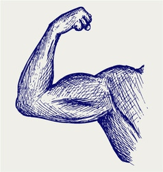Strong biceps vector