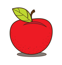 Red apple colored fruit logo on a white vector