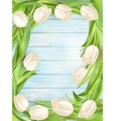Bouquet of white tulips eps 10 vector
