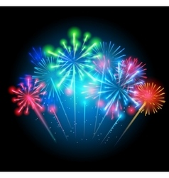 Fireworks Salute on a Dark vector image vector image