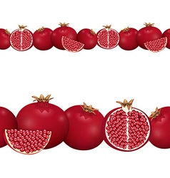 Seamless border of pomegranate vector