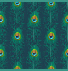Peacock feather seamless pattern vector