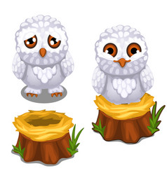 Sad and cheerful owlet on the nest on stump vector