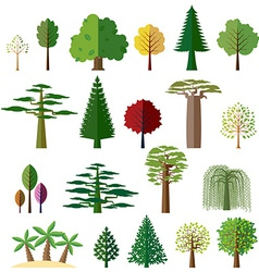 Trees from different regions of the world vector