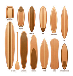 wooden surfboards isolated on white vector image vector image