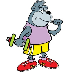 Cartoon gorilla holding a dumbbell vector