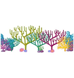 Coral reefs in different colors vector