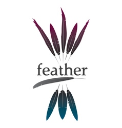 Colorful feather logo vector