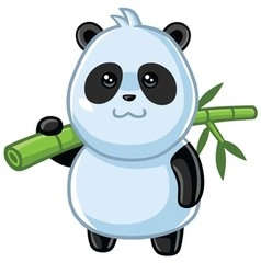 Cute Little Panda Cartoon vector image