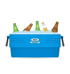 Ice cooler or beer in box on white vector image vector image