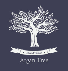 Natural tree with foliage argania and argan plant vector