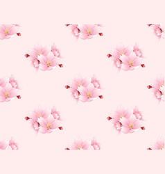sakura cherry blossom flower seamless on pink vector image vector image