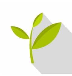 Tea plant icon flat style vector