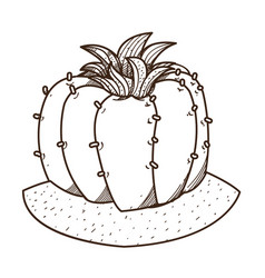 Blooming cactus outline drawing for coloring vector