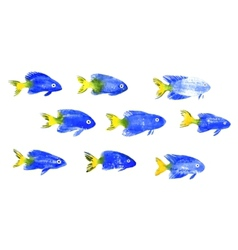 Set of watercolor discus fish vector