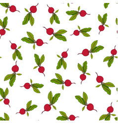 beetroot seamless pattern vector image vector image