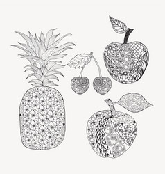 hand drawn doodle set of fruits for coloring book vector image vector image