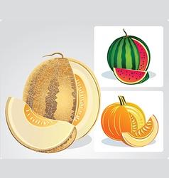 Melons vector
