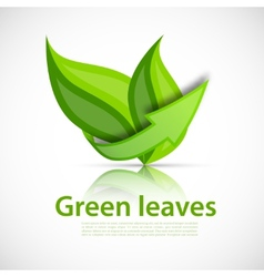 Green leaves with arrow vector image