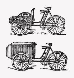 Engraving rickshaw bike vector