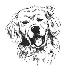 Hand sketch dogs head vector