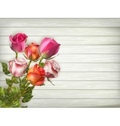 Roses on wooden background EPS 10 vector image vector image