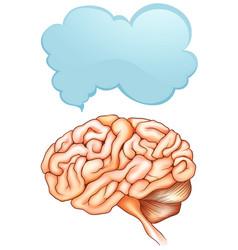 Speech bubble template with human brain vector