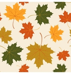 Seamless with autumn maple leaves vector
