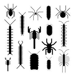 Spiders and scorpions dangerous insects animals vector
