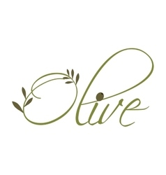 Olive leaves icon organic and healthy food design vector