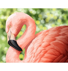A beautiful flamingo vector