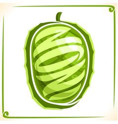 Logo for noni fruit vector
