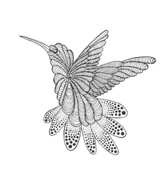 Zentangle stylized hummingbird vector image vector image