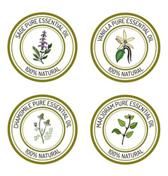 Set of essential oil labels sage vanilla vector