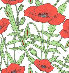 Elegant floral seamless pattern with poppy flowers vector image