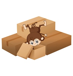 A monkey and boxes vector image vector image