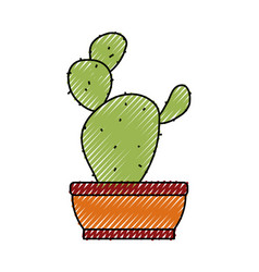 cactus in the potted vector image vector image