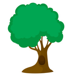 Green tree with big trunk vector