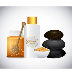 Honey face cream vector