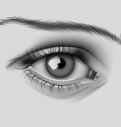 Realistic womens eye vector