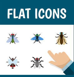 flat icon housefly set of fly gnat dung and vector image