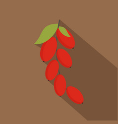red berries of cornel or dogwood icon flat style vector image vector image