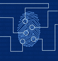 Fingerprint biometric identification vector